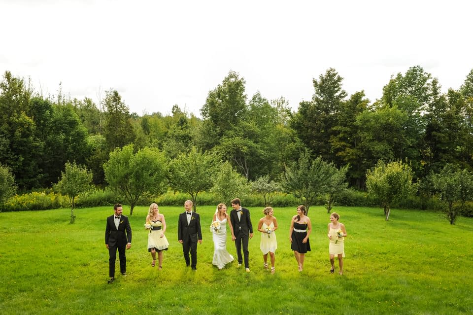 Wedding party photo on green hill