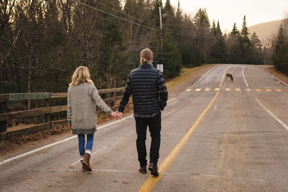 Engagement photo with a deer at Mont-Tremblant