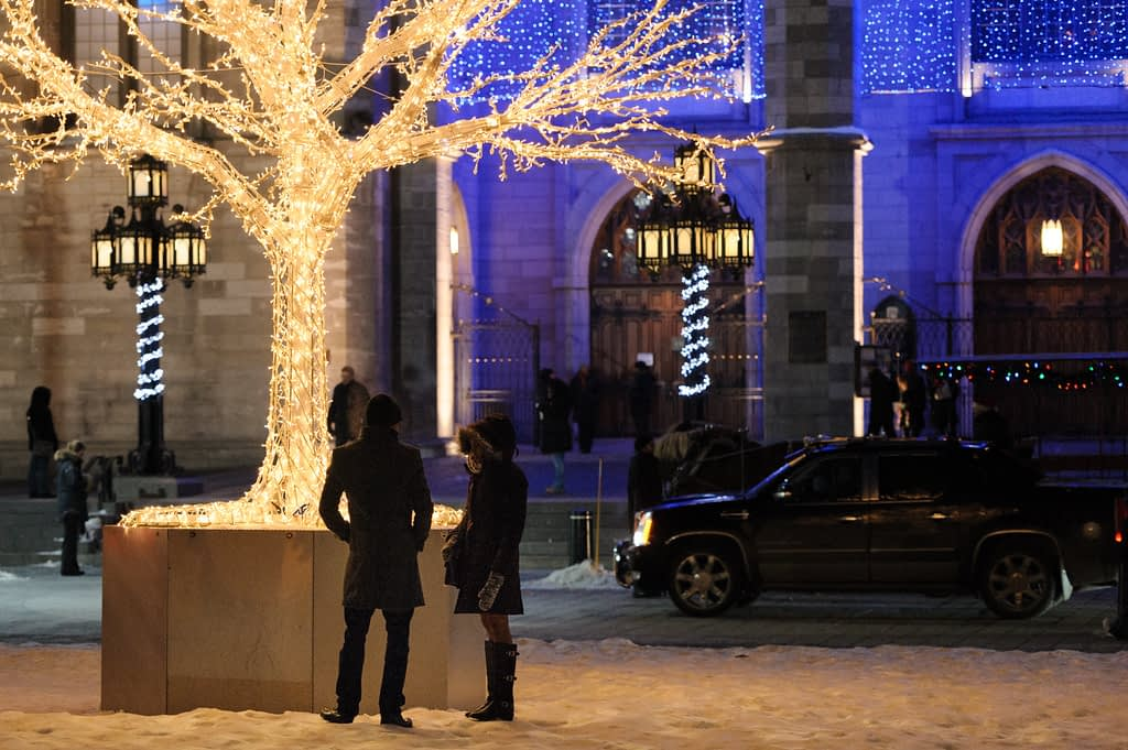 Couple standing next to a twinkly light tree