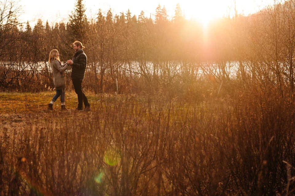 Engagement photo in a field of dried flowers at sunset